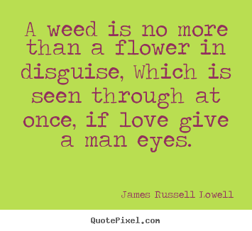 Love quotes - A weed is no more than a flower in disguise, which is seen..