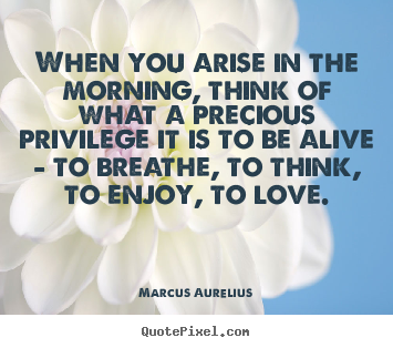 Marcus Aurelius picture quotes - When you arise in the morning, think of what a precious.. - Love quotes